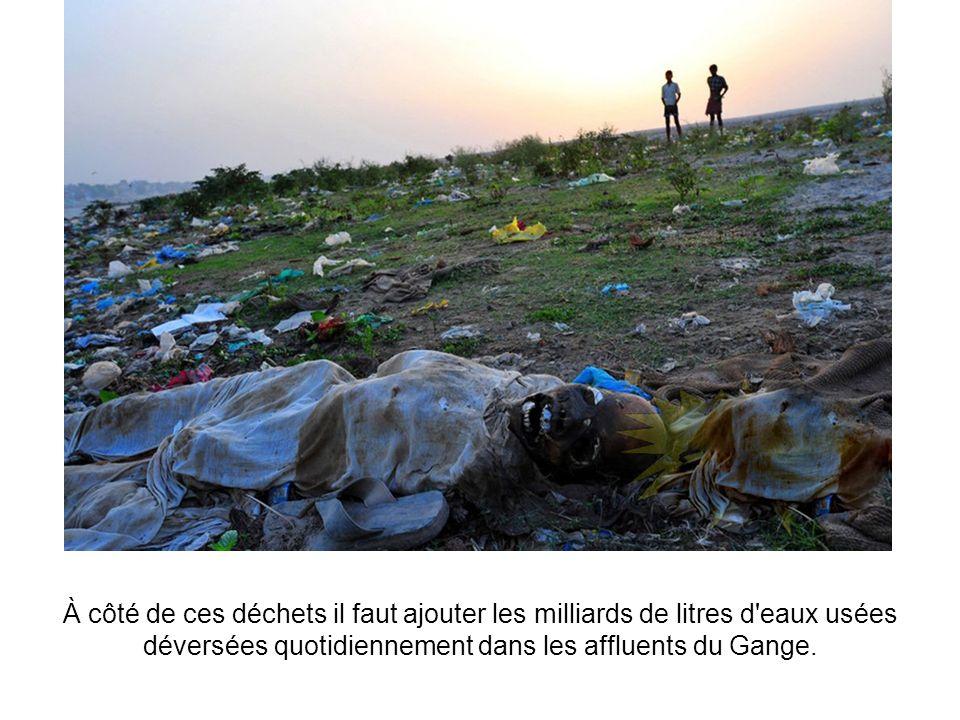 À côté de ces déchets il faut ajouter les milliards de litres d eaux usées déversées quotidiennement dans les affluents du Gange.