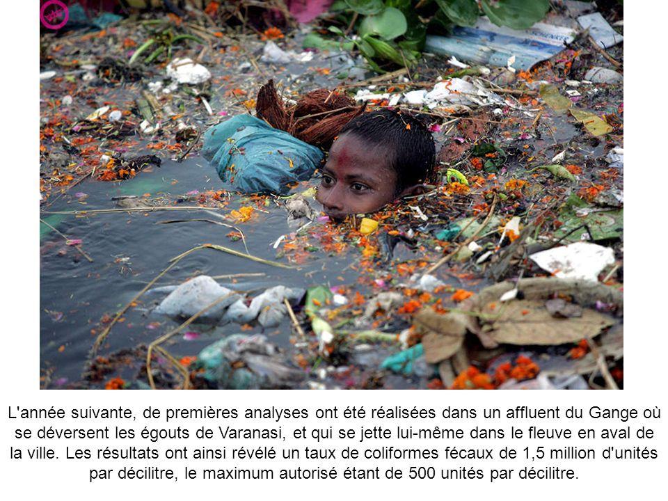 L année suivante, de premières analyses ont été réalisées dans un affluent du Gange où se déversent les égouts de Varanasi, et qui se jette lui-même dans le fleuve en aval de la ville.