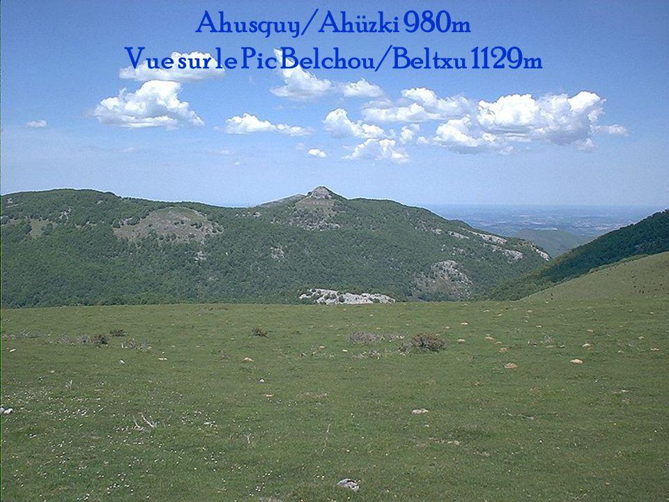 Vue sur le Pic Belchou/Beltxu 1129m