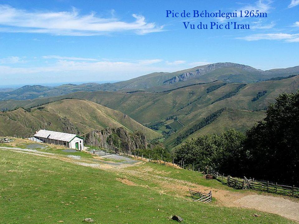 Pic de Béhorlegui 1265m Vu du Pic d'Irau