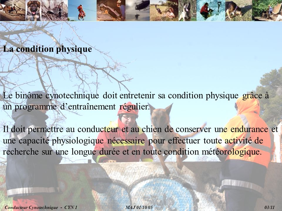 La condition physique Le binôme cynotechnique doit entretenir sa condition physique grâce à un programme d'entraînement régulier.