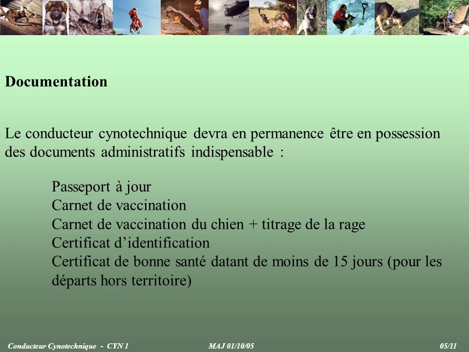 Carnet de vaccination du chien + titrage de la rage
