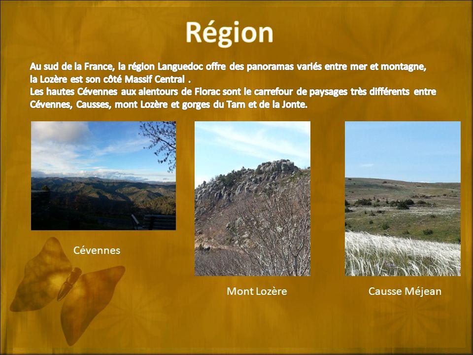 Région Cévennes Mont Lozère Causse Méjean