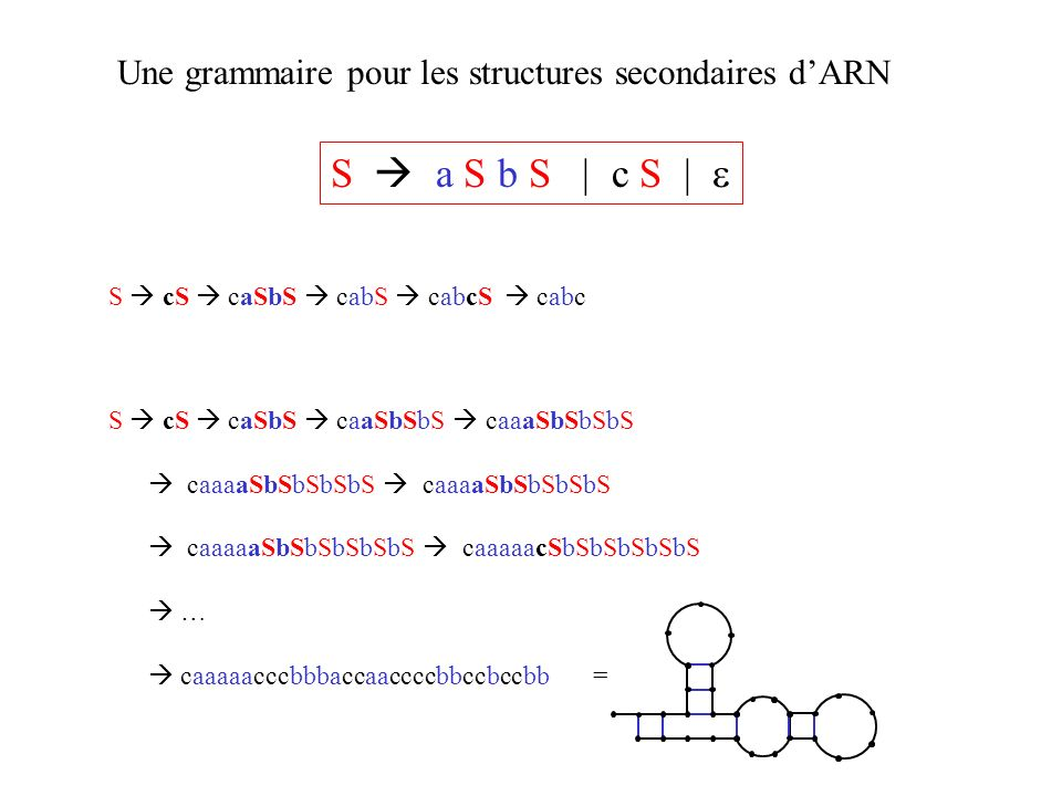 Une grammaire pour les structures secondaires d'ARN