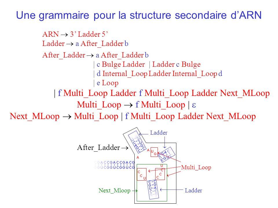 Une grammaire pour la structure secondaire d'ARN
