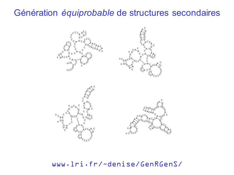 Génération équiprobable de structures secondaires