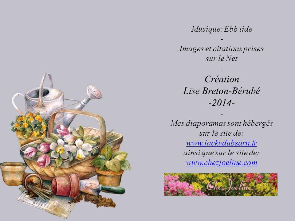 Création Lise Breton-Bérubé -2014- Musique: Ebb tide -