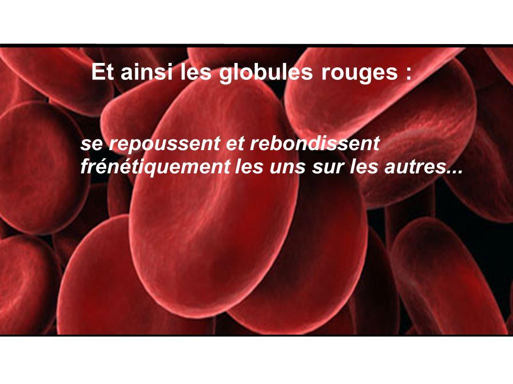Et ainsi les globules rouges :