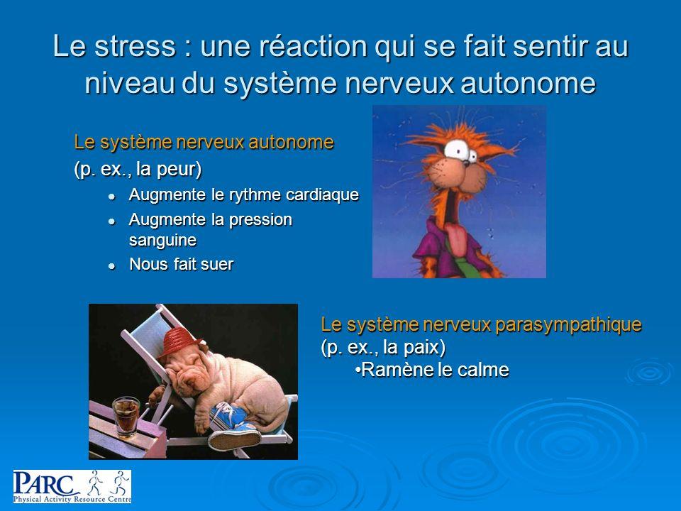 Le stress : une réaction qui se fait sentir au niveau du système nerveux autonome