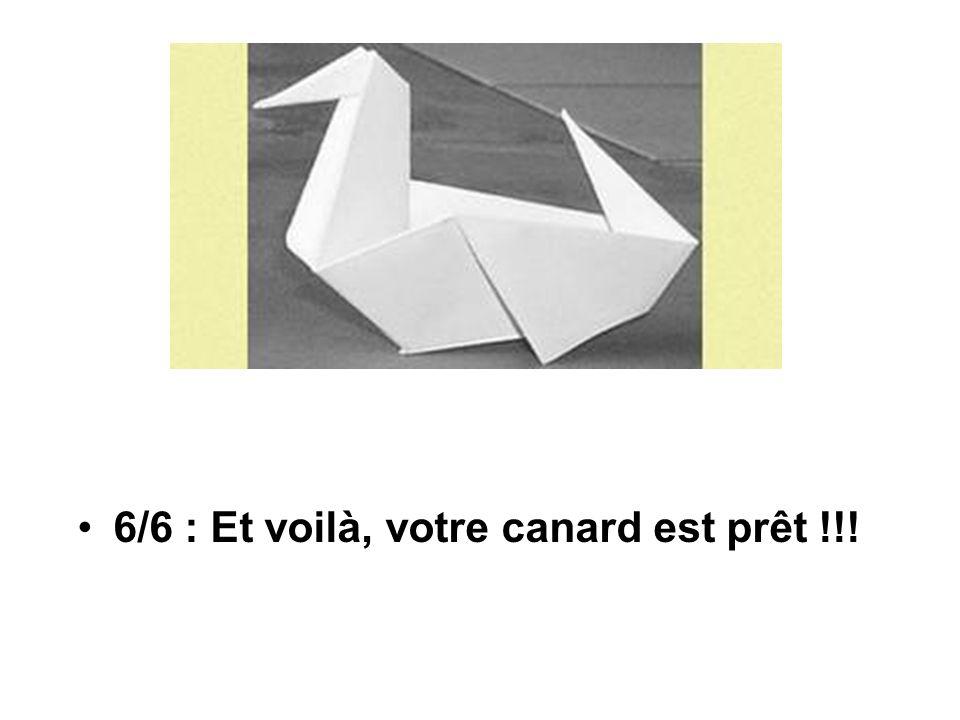 6/6 : Et voilà, votre canard est prêt !!!