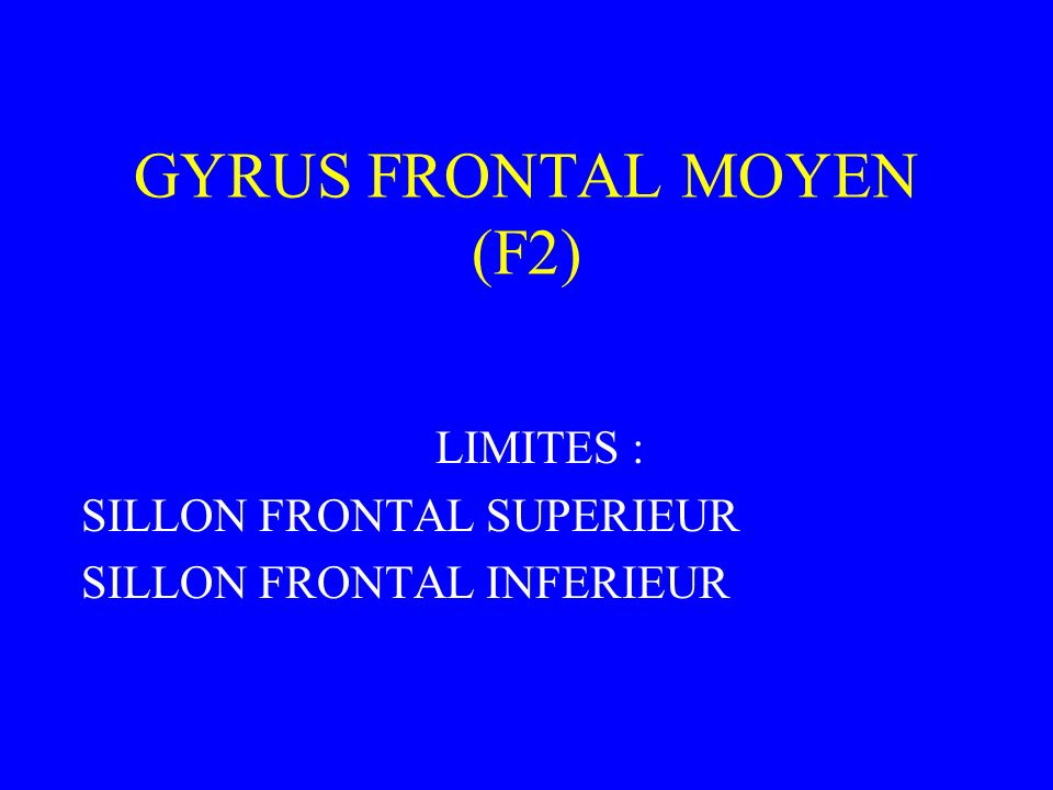 GYRUS FRONTAL MOYEN (F2)