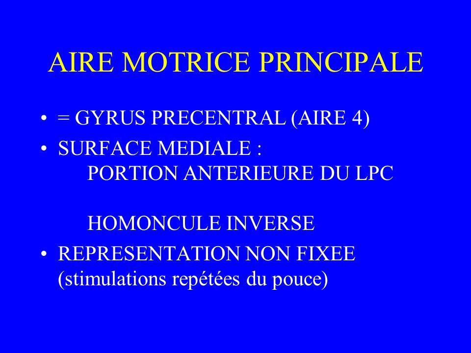 AIRE MOTRICE PRINCIPALE