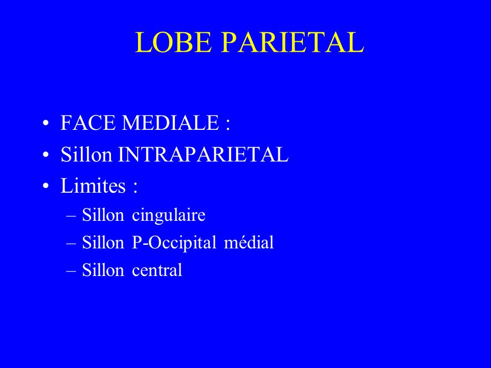 LOBE PARIETAL FACE MEDIALE : Sillon INTRAPARIETAL Limites :