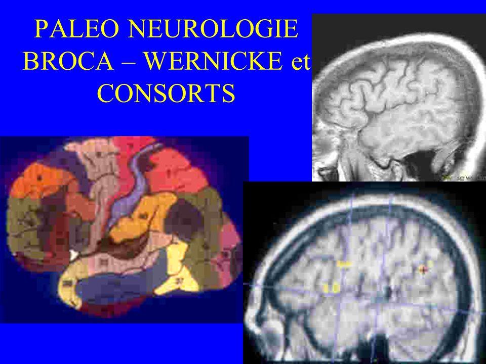 PALEO NEUROLOGIE BROCA – WERNICKE et CONSORTS