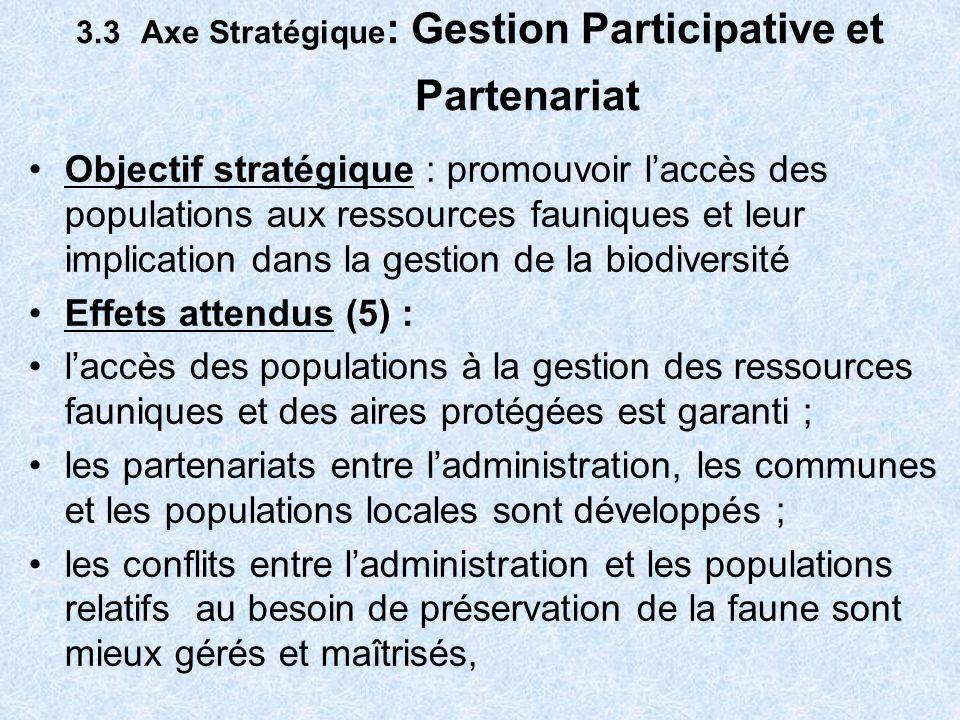 3.3 Axe Stratégique: Gestion Participative et Partenariat
