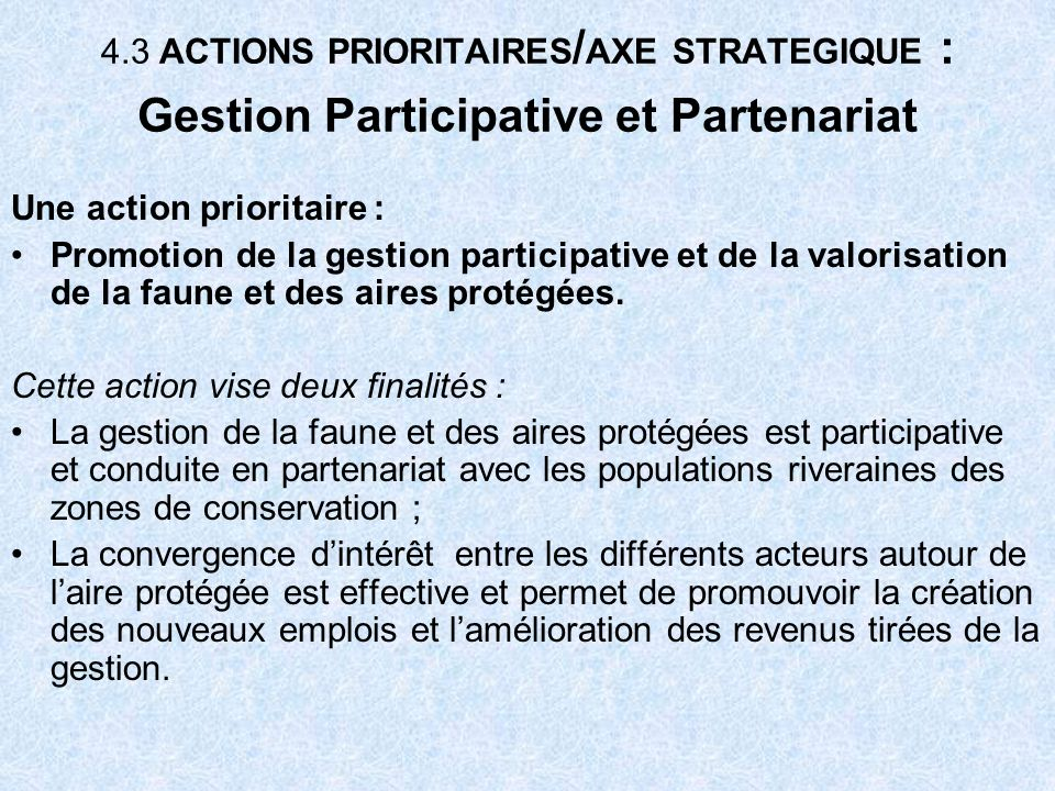 4.3 ACTIONS PRIORITAIRES/AXE STRATEGIQUE : Gestion Participative et Partenariat
