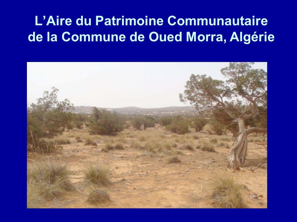 L'Aire du Patrimoine Communautaire de la Commune de Oued Morra, Algérie