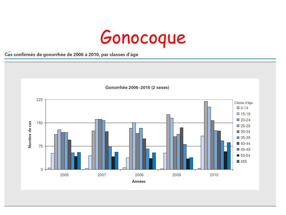 Gonocoque