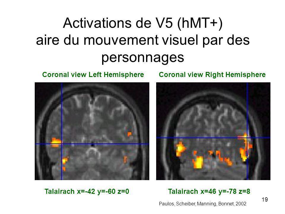 Activations de V5 (hMT+) aire du mouvement visuel par des personnages