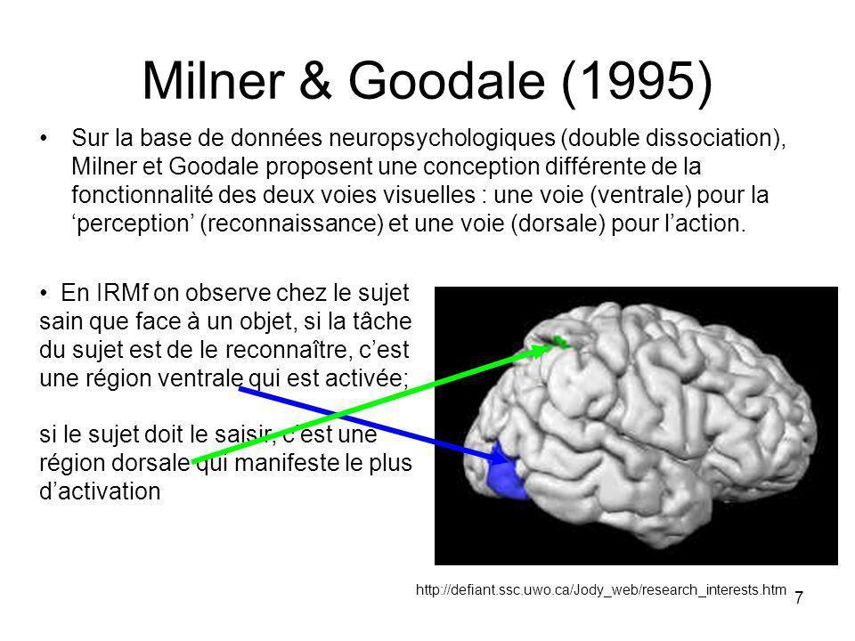 Milner & Goodale (1995)
