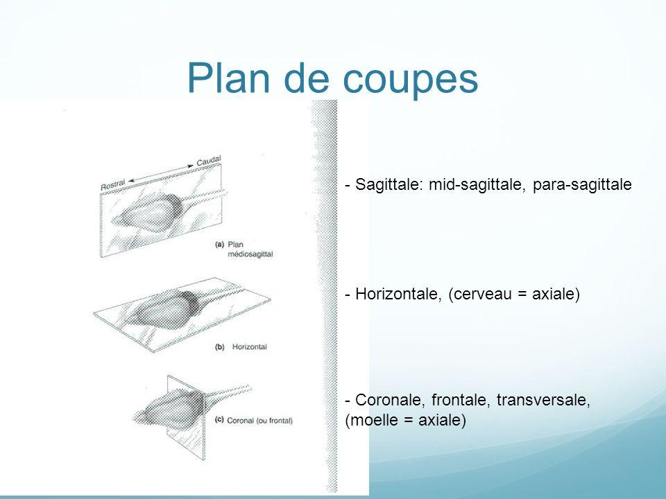 Plan de coupes - Sagittale: mid-sagittale, para-sagittale