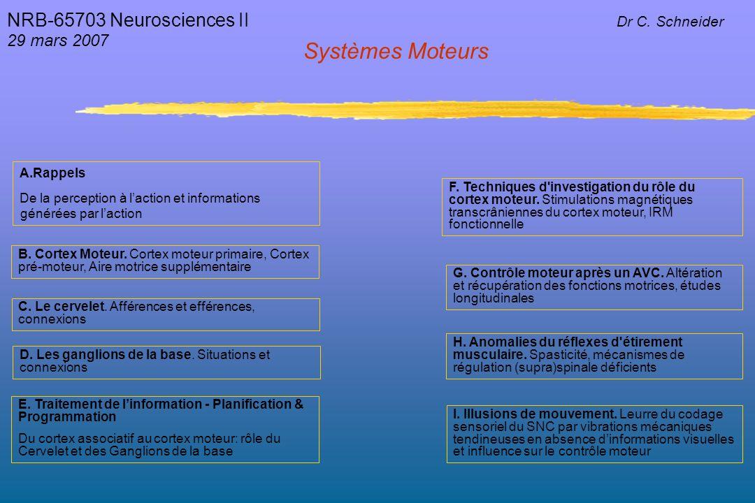 Systèmes Moteurs NRB-65703 Neurosciences II 29 mars 2007