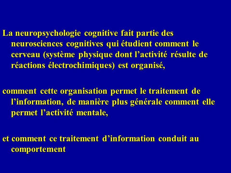 La neuropsychologie cognitive fait partie des neurosciences cognitives qui étudient comment le cerveau (système physique dont l'activité résulte de réactions électrochimiques) est organisé,