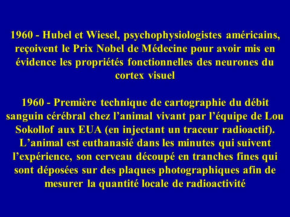1960 - Hubel et Wiesel, psychophysiologistes américains, reçoivent le Prix Nobel de Médecine pour avoir mis en évidence les propriétés fonctionnelles des neurones du cortex visuel 1960 - Première technique de cartographie du débit sanguin cérébral chez l'animal vivant par l'équipe de Lou Sokollof aux EUA (en injectant un traceur radioactif).