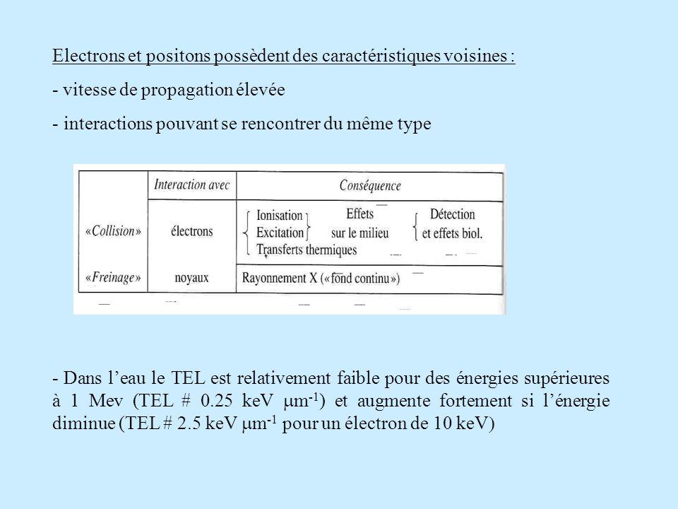 Electrons et positons possèdent des caractéristiques voisines :