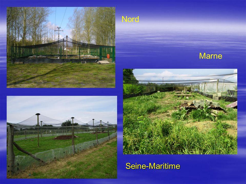 Nord Marne Seine-Maritime