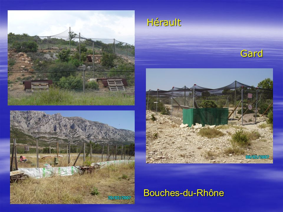 Hérault Gard Bouches-du-Rhône