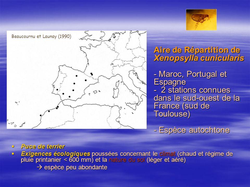 Beaucournu et Launay (1990)