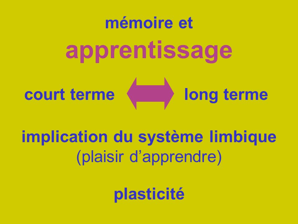 mémoire et apprentissage