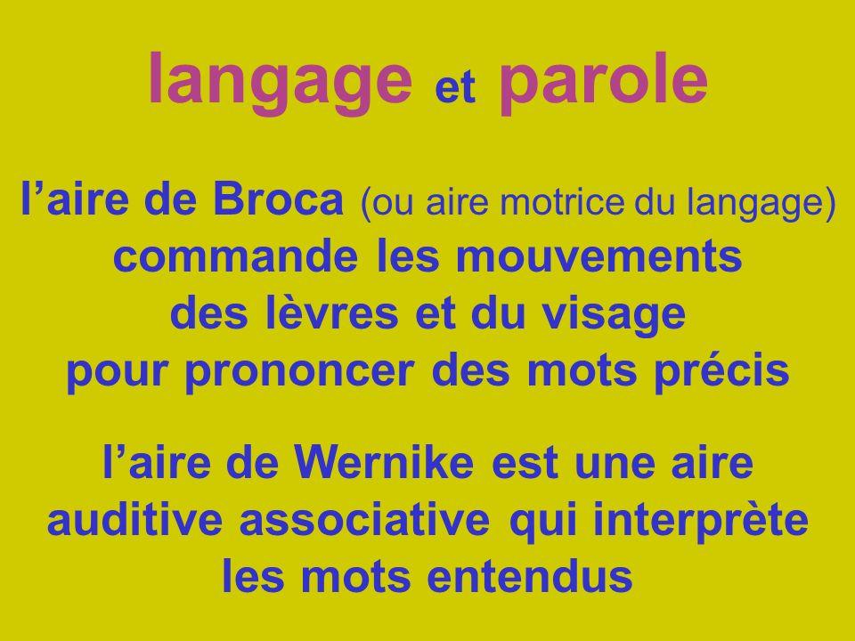 langage et parole