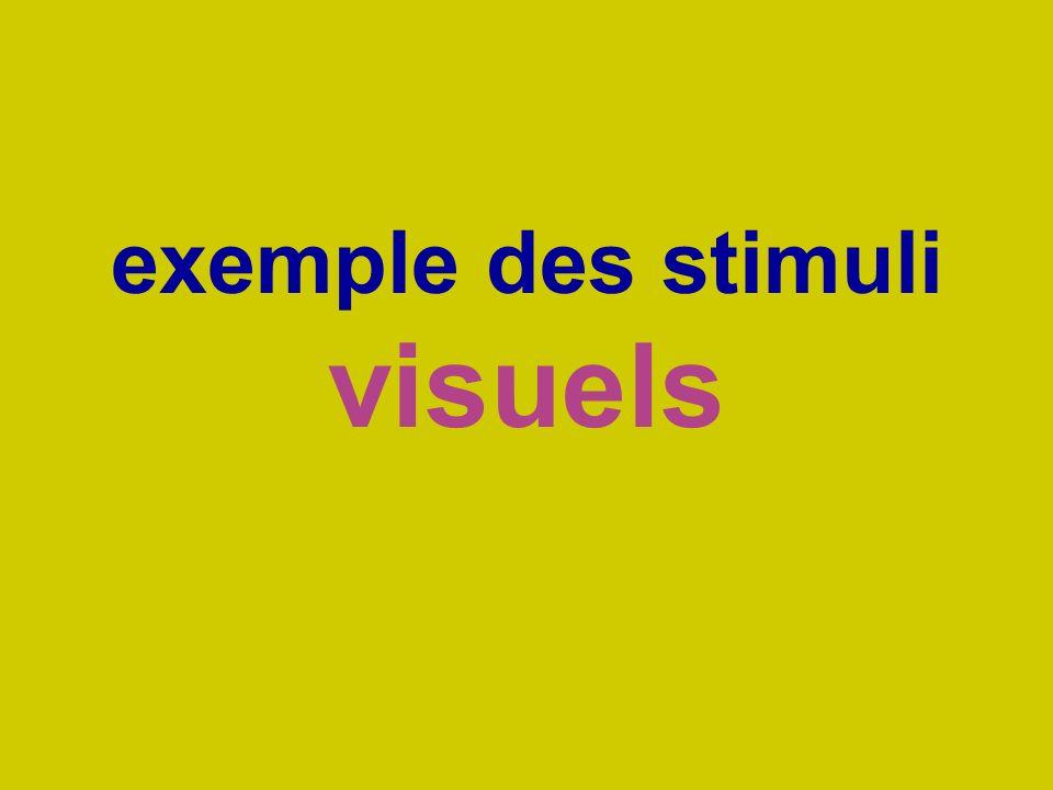 exemple des stimuli visuels