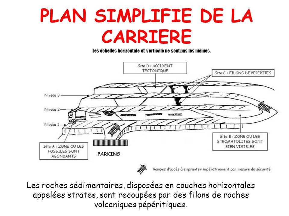 PLAN SIMPLIFIE DE LA CARRIERE