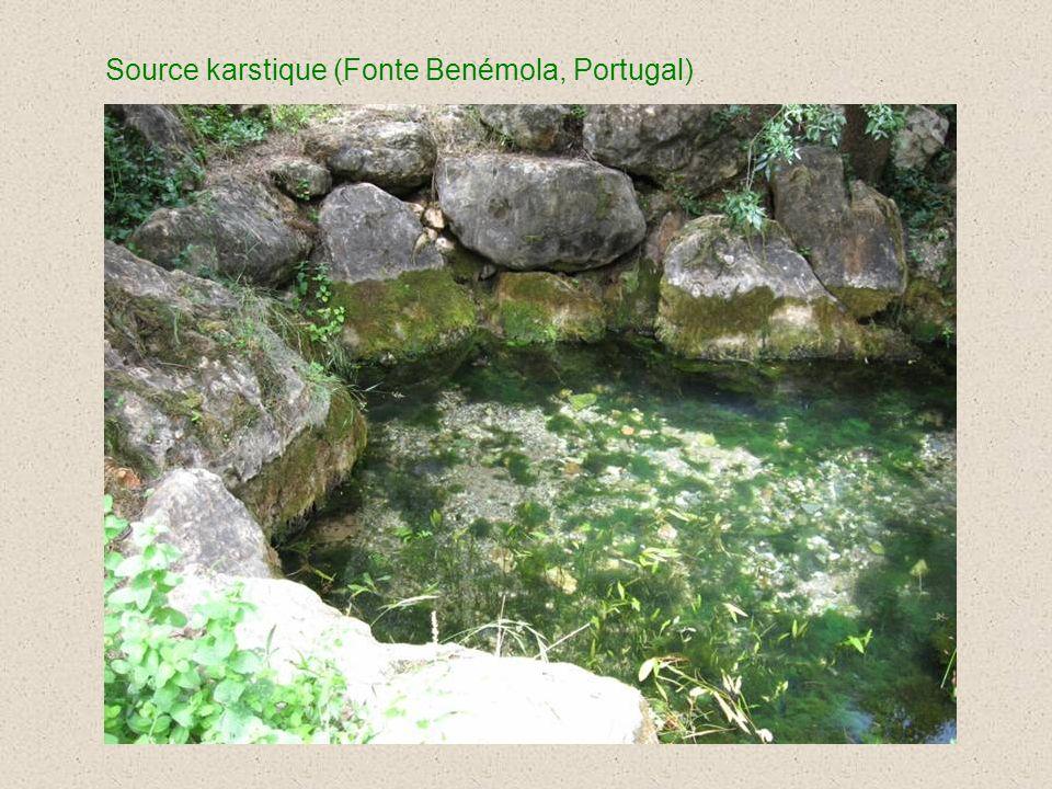 Source karstique (Fonte Benémola, Portugal)