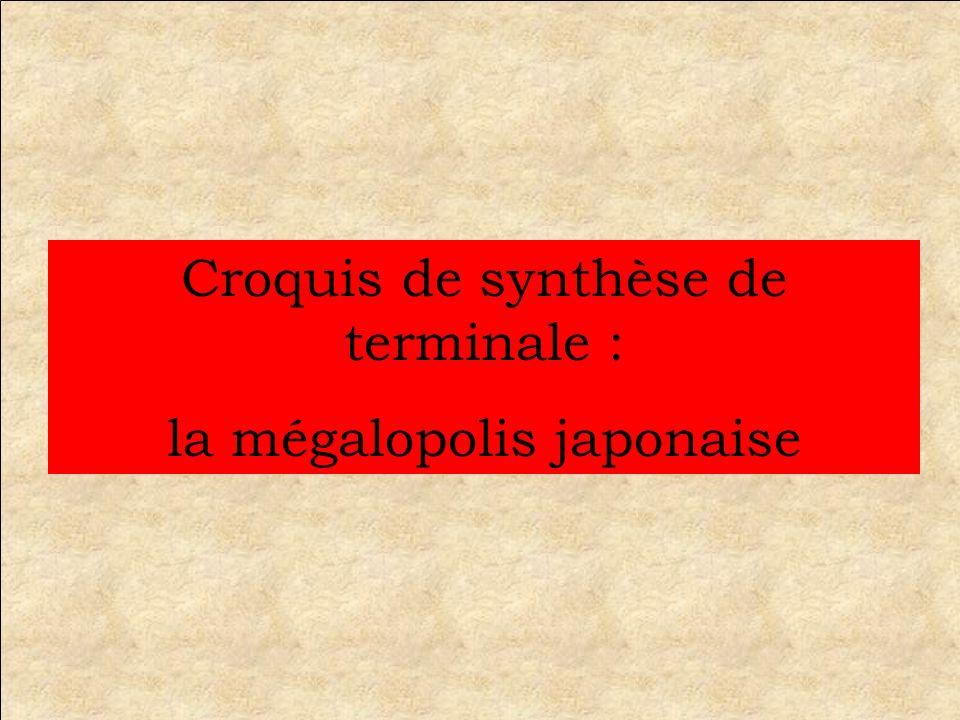 Croquis de synthèse de terminale : la mégalopolis japonaise