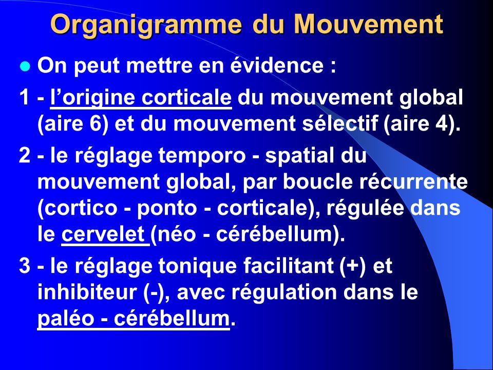 Organigramme du Mouvement