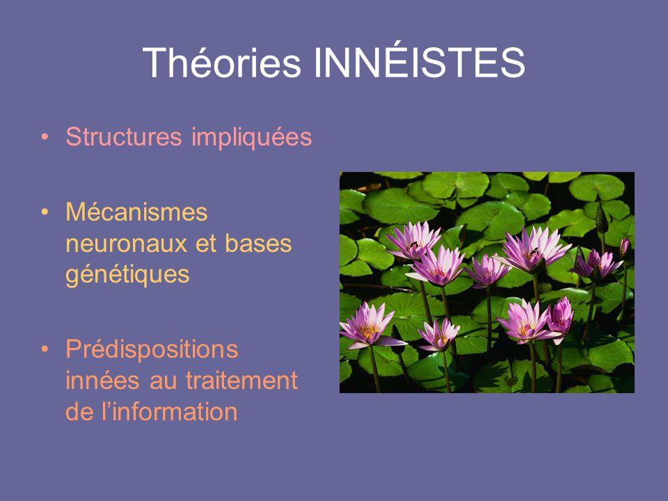Théories INNÉISTES Structures impliquées