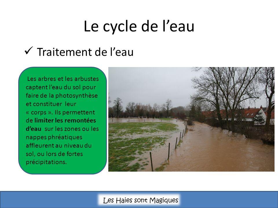 Le cycle de l'eau Traitement de l'eau