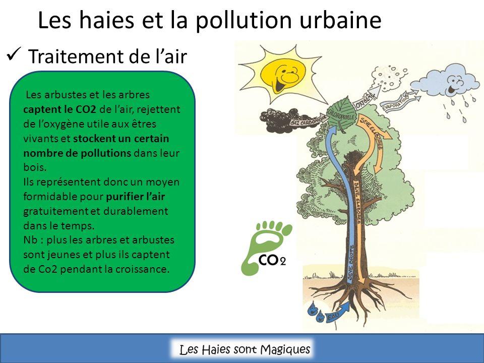 Les haies et la pollution urbaine