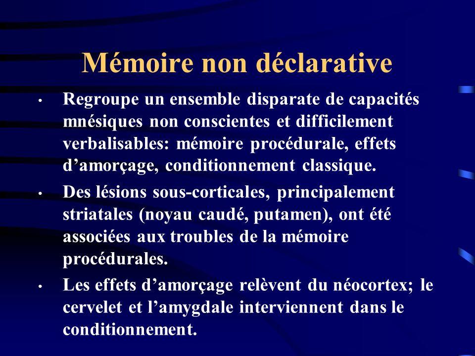 Mémoire non déclarative