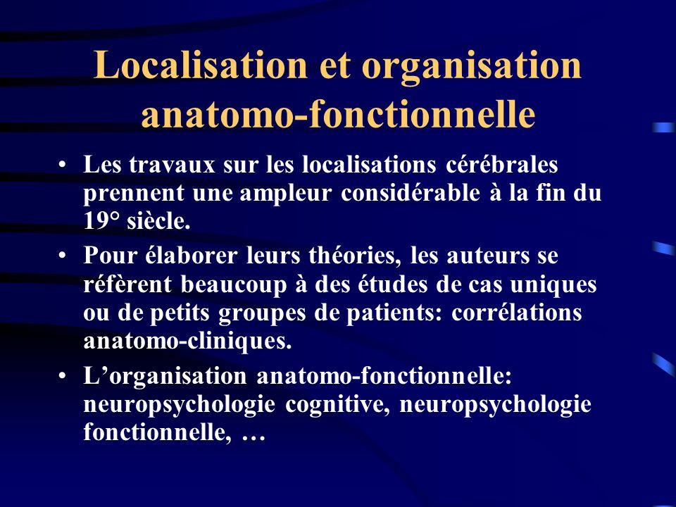 Localisation et organisation anatomo-fonctionnelle
