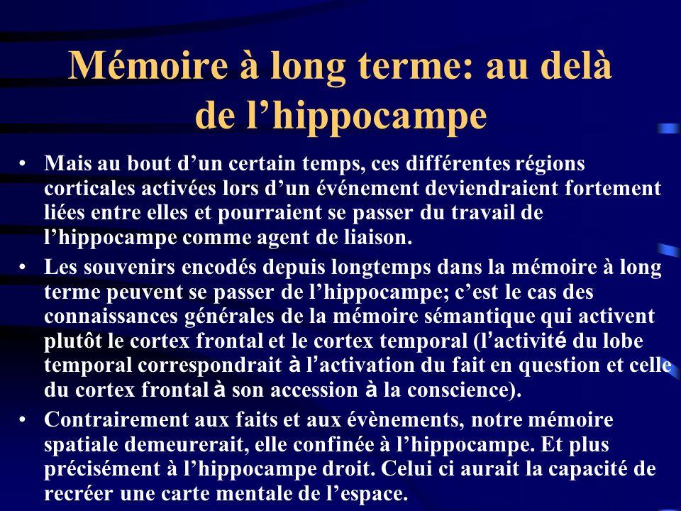Mémoire à long terme: au delà de l'hippocampe