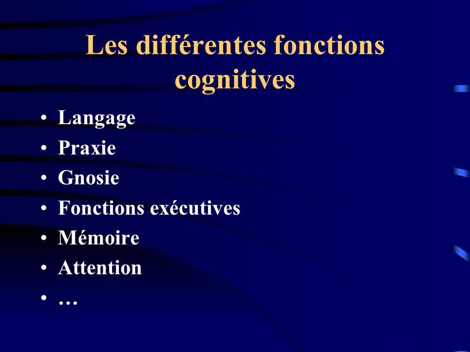 Les différentes fonctions cognitives
