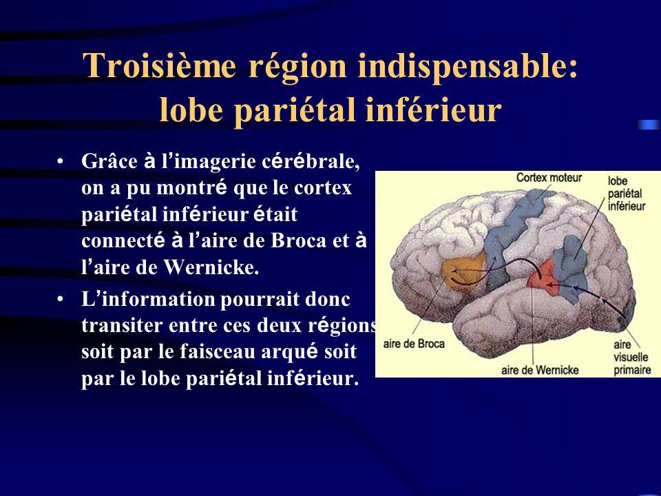 Troisième région indispensable: lobe pariétal inférieur