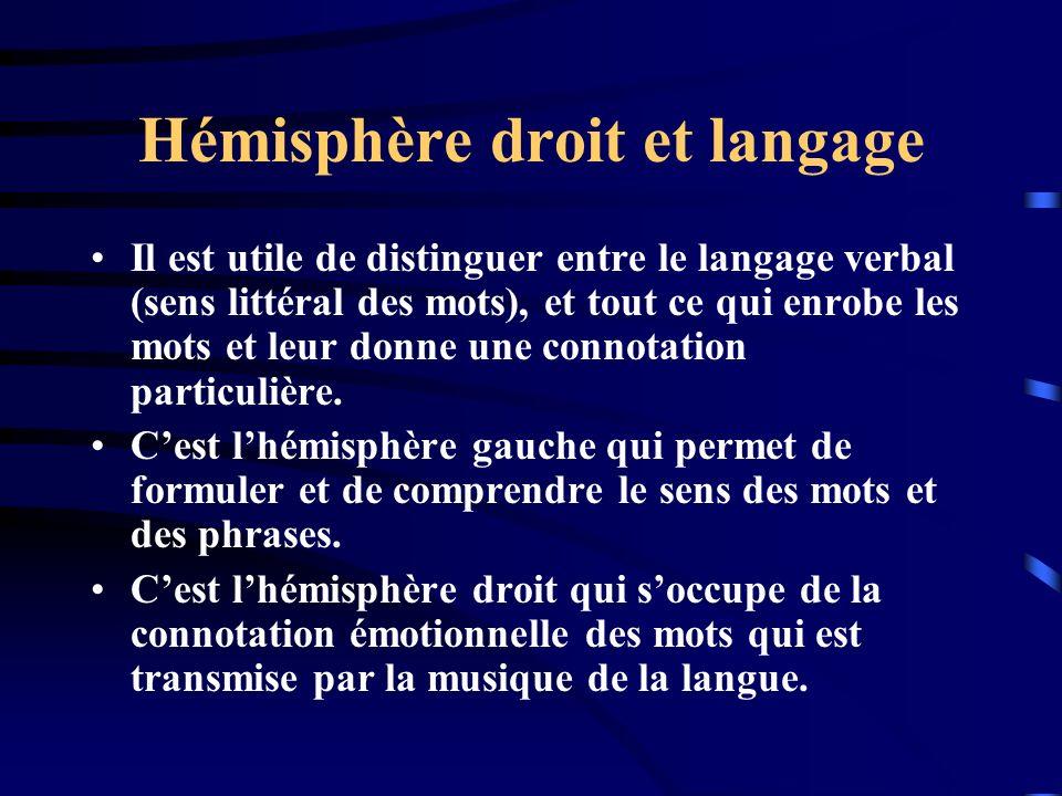 Hémisphère droit et langage