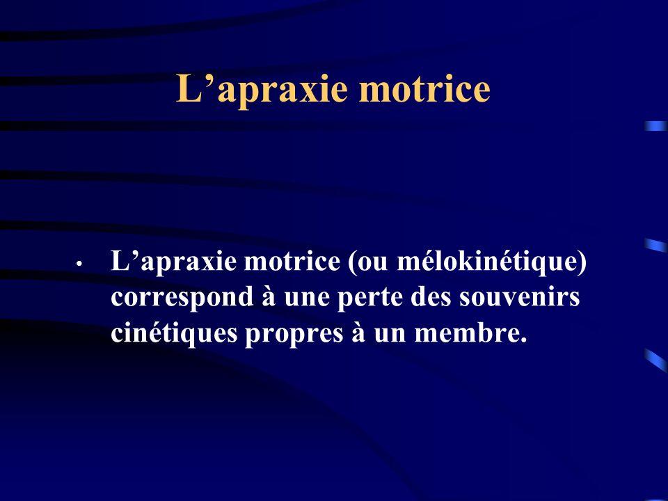 L'apraxie motrice L'apraxie motrice (ou mélokinétique) correspond à une perte des souvenirs cinétiques propres à un membre.