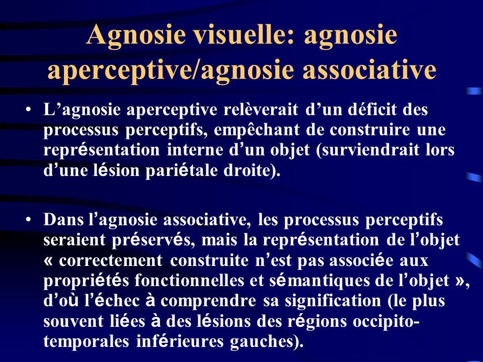 Agnosie visuelle: agnosie aperceptive/agnosie associative